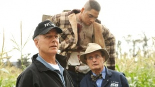 NCIS 07x09 : Child's Play- Seriesaddict
